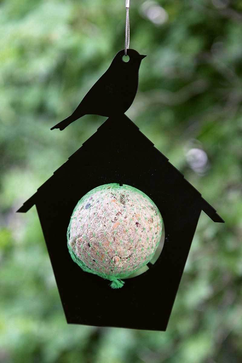 Pluto Birdfeeder Huisje-7350027568780-33