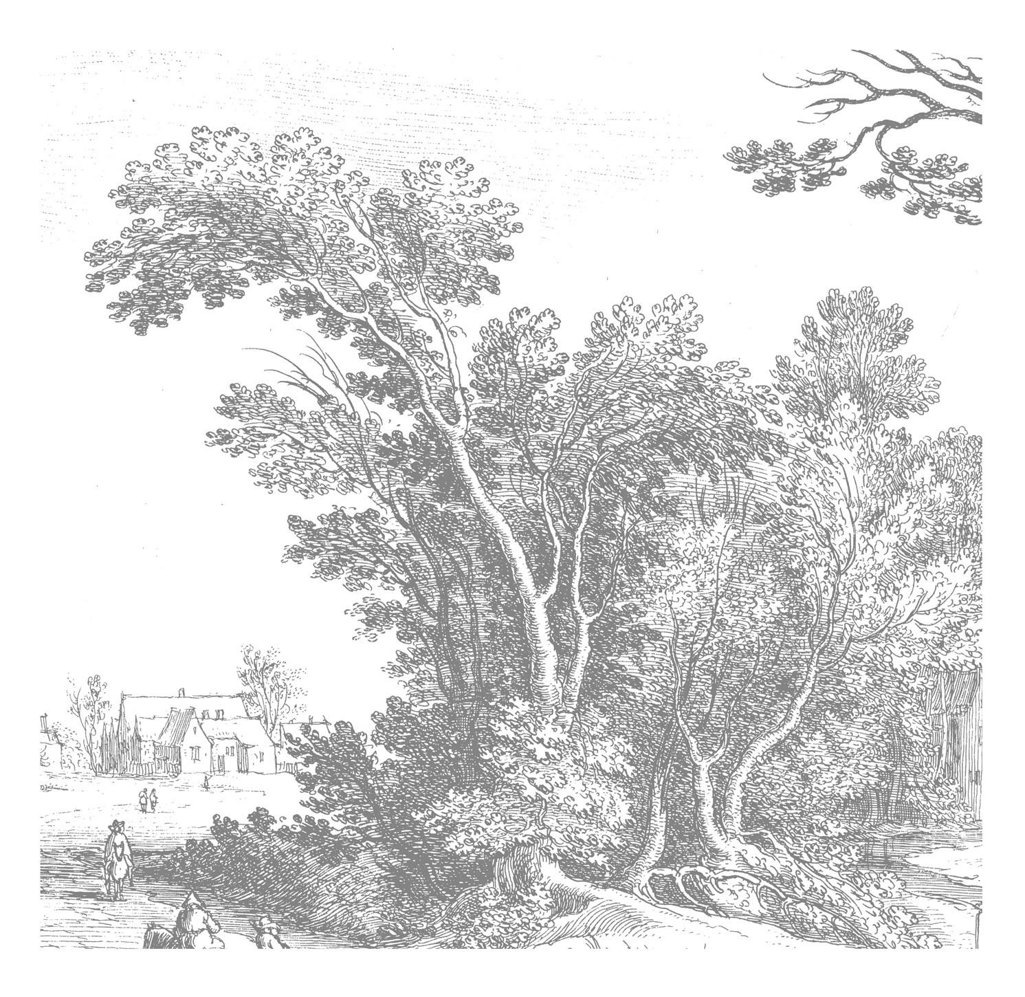 Kek Amsterdam Behang Engraved Landscape V-8718754018388-31