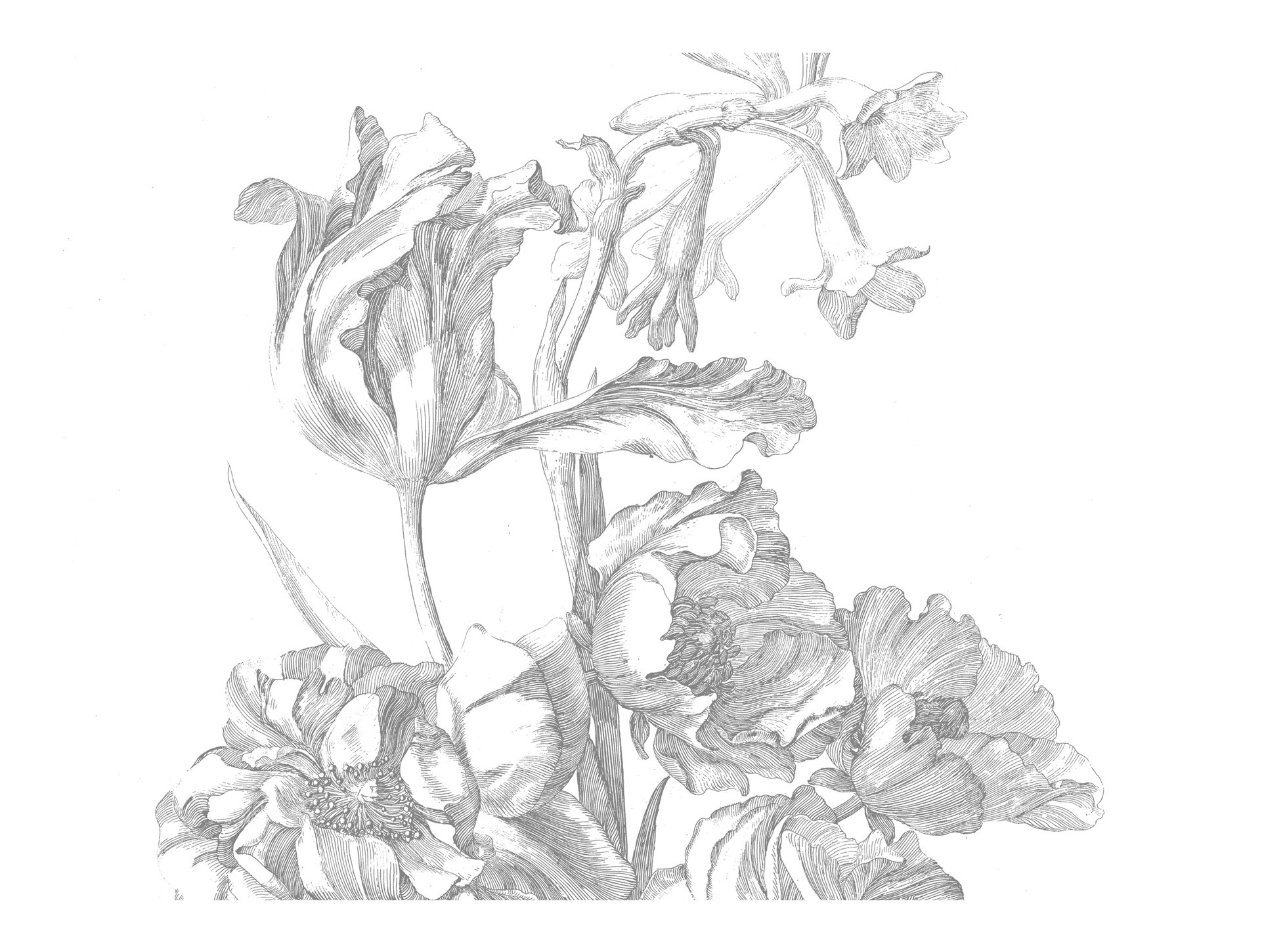 Kek Amsterdam Engraved Flowers I 389.6x280cm-8718754018524-31
