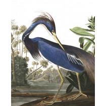 KEK Wallpaper Panel, Louisiana Heron-8719743885608-20