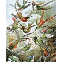 KEK Wallpaper Panel, Exotic Birds-8719743885721-20