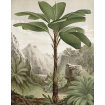 KEK Wallpaper Panel, Banana Tree 142,5x180cm-8719743885592-20