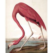 KEK Wallpaper Panel, Flamingo-8719743885615-20