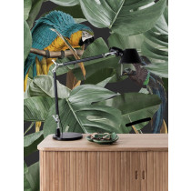 KEK Amsterdam Behang Botanical Birds, Zwart-8719743886681-20