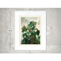 Naturalis Unlimited art print 30x40 in passe-partout 40x50 Temple of Flora III-576845645645645-20