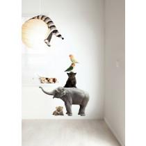 KEK Amsterdam Muurstickers Safari Friends set 3 (5 muurstickers)-8718754011266-20