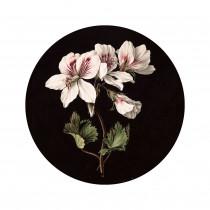 KEK Wallpaper Circle, White Flowers diameter van 142,5-8719743888340-20