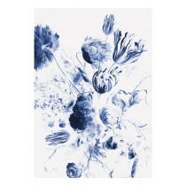 KEK Amsterdam Fotobehang Royal Blue Flowers II, 4 vellen-8718754016605-20