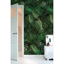 KEK Amsterdam Tropisch Behang Monstera-8718754017169-20