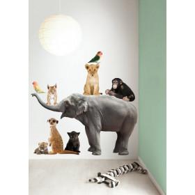 KEK Amsterdam Muurstickers Safari Friends Set Olifant XL