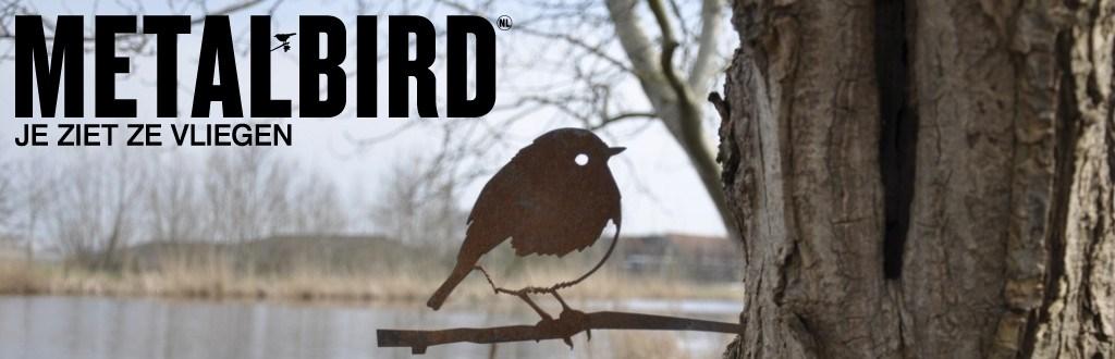 metalbird kopen